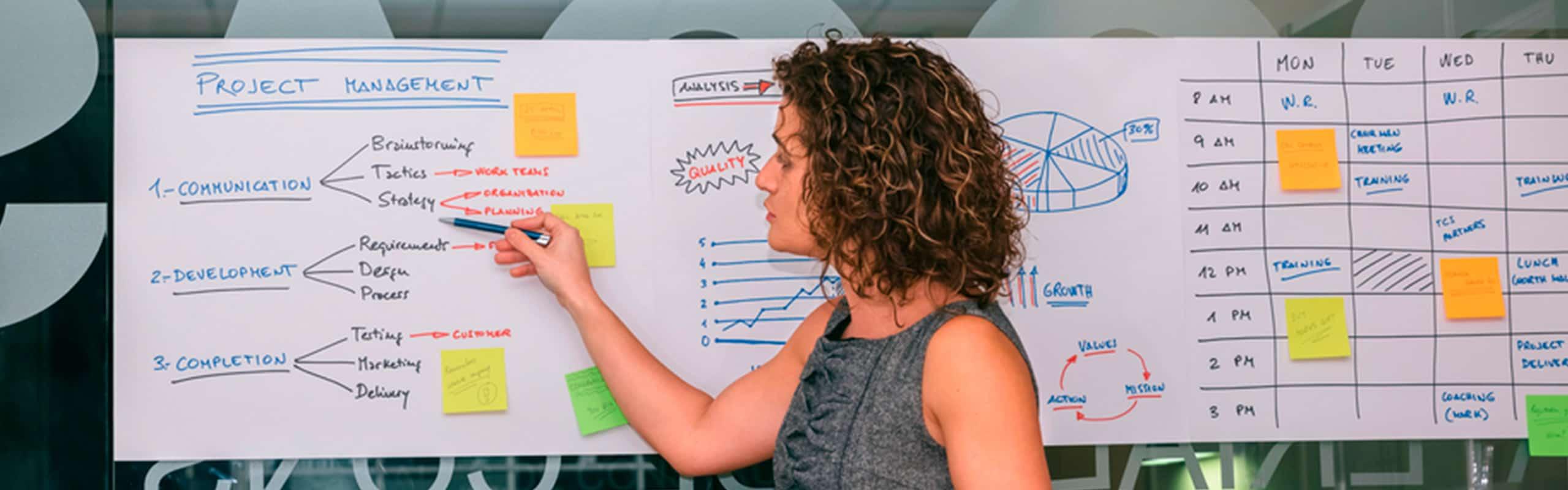 Descubre la importancia del project manager en el sector logístico